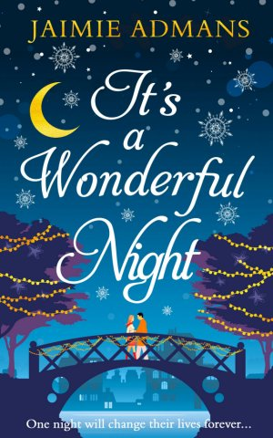 It's a Wonderful Night-small